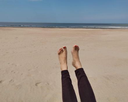 Integrale voetreflexologie